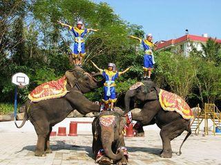 <曼谷+芭提雅>泰国5晚7天日游  双岛双船游  品尝正宗泰餐