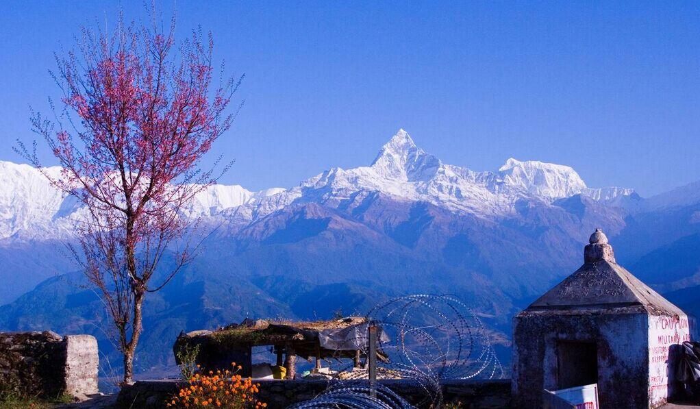 【尼泊尔】深度9日蓝毗尼之旅