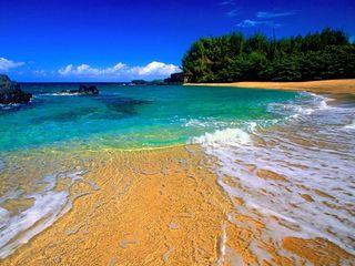 【夏威夷5晚8日半自助游】搭乘游艇出海与海豚共舞