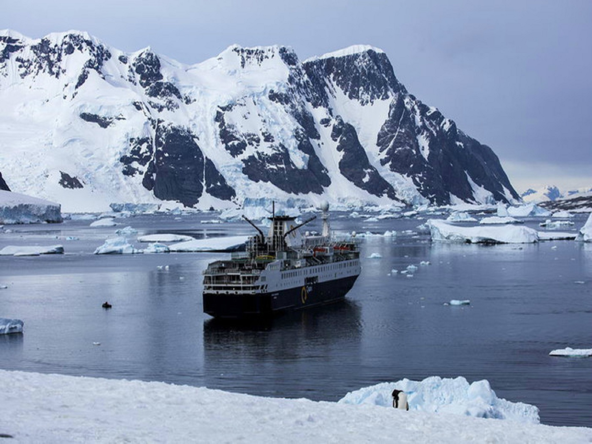 <海恩典号>穿越南极圈+南极三岛+阿根廷28天 南乔治亚岛 福克兰群岛 南极半岛