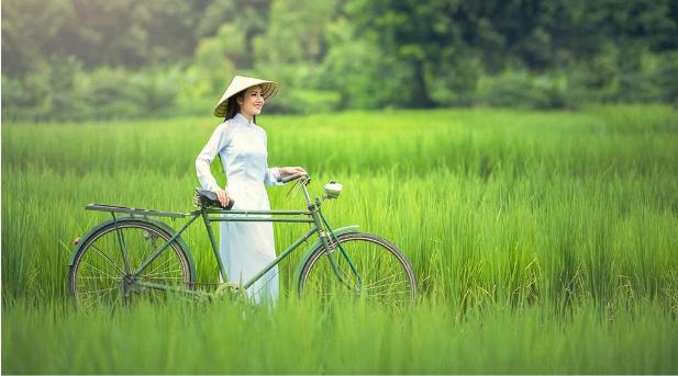 <越柬连线>越南柬埔寨8日游 胡志明市 美托 金边 吴哥经典之旅
