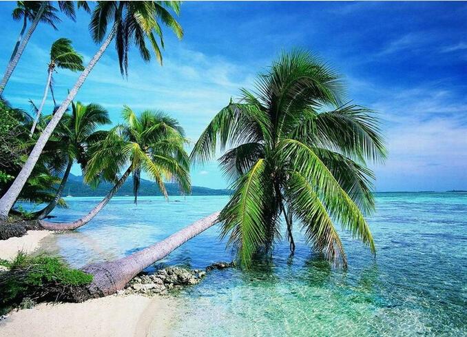 <曼谷+芭提雅+夜宿沙美岛>泰国5晚7日游 全程无自费 曼谷2晚国际五星