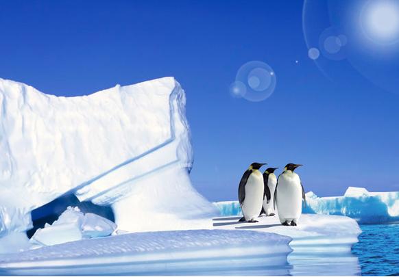 【情迷系列】挚爱极地---纯美南极+南美四国摄影31天璀璨之旅