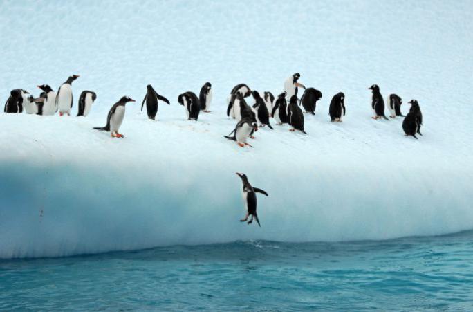 【秘鲁、智力+南极】南极直飞+秘鲁18日游